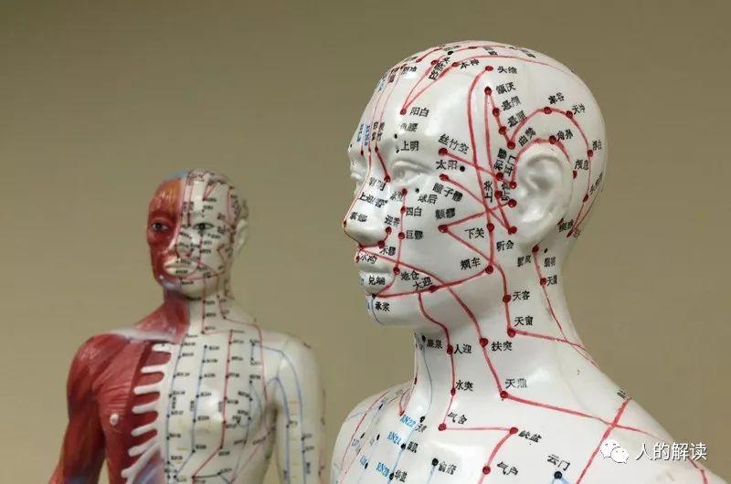 经络系列[09] 经络之所以解剖不着,原来因为它是耗散结构-人的解读