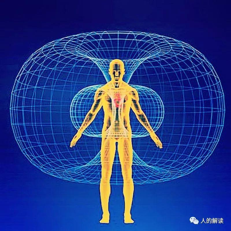 """经络系列[10] 经络的本质:电磁驻波形成的""""耗散结构""""-人的解读"""